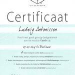 certificaatVitacademiemodulecoach